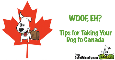 Traveling With Pets to Canada Just Got Easier