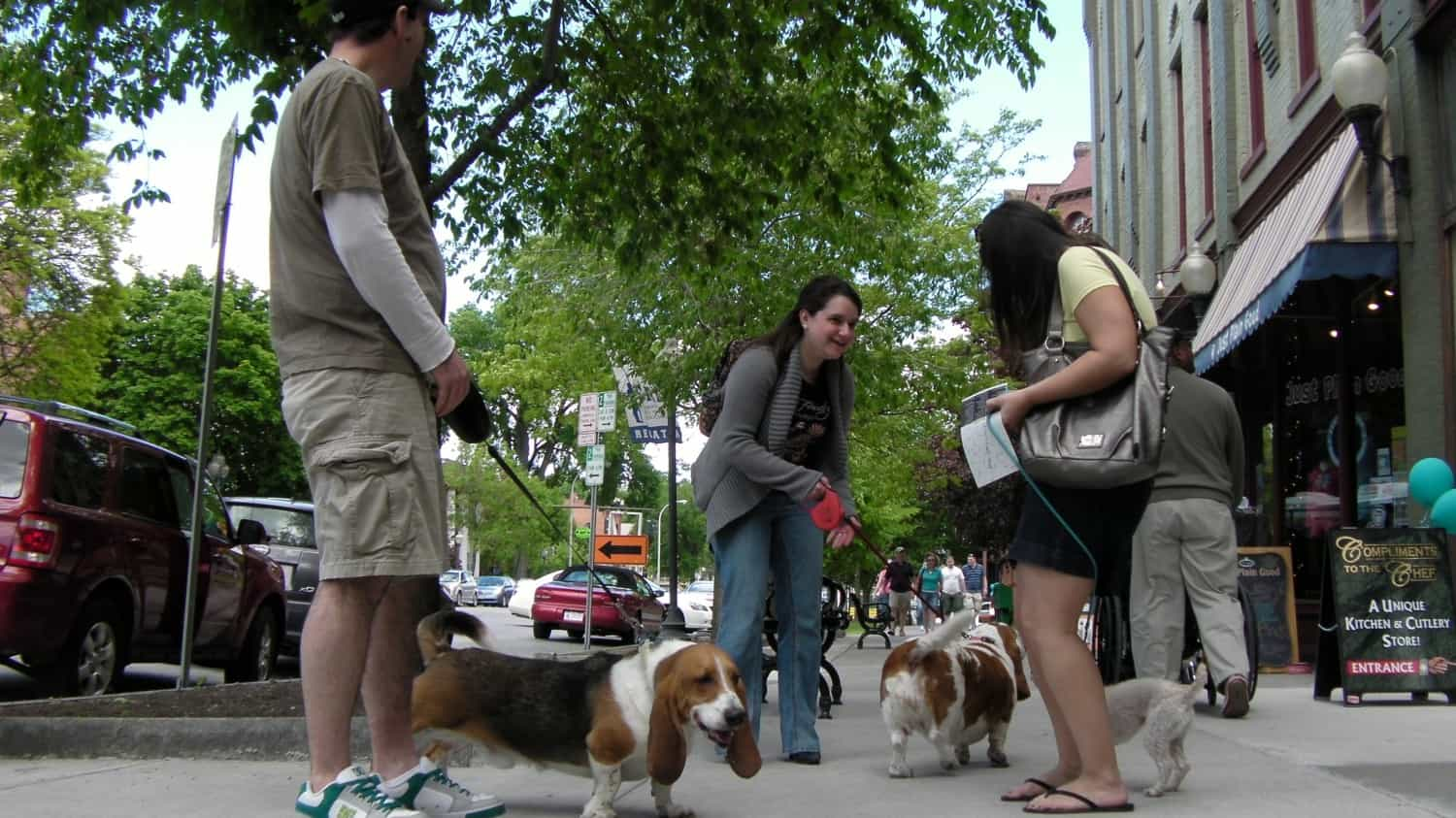 Saratoga Springs for Dog-Friendly Businesses