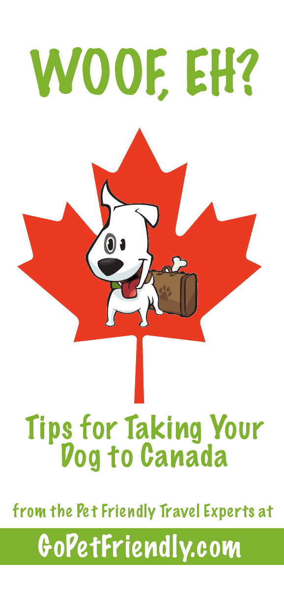 Tips for Traveling with Dogs to Canada