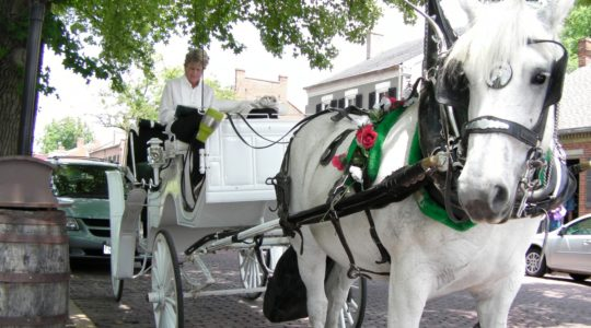 Horsedrawn carriage - St. Charles, MO