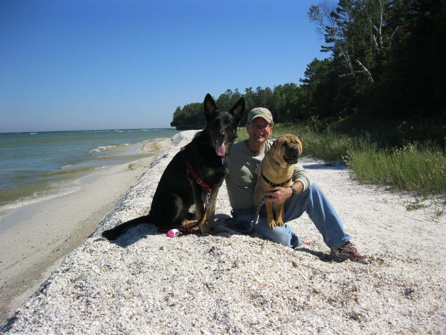 Pet Friendly Door County Is Picture Perfect
