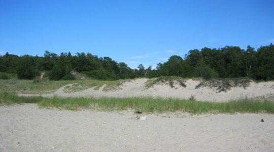 Dunes Beach - Charlevoix, MI