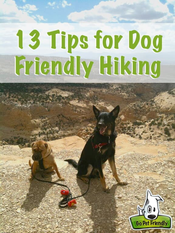 GoPetFriendly.com brings you 13 tips for dog friendly hiking.