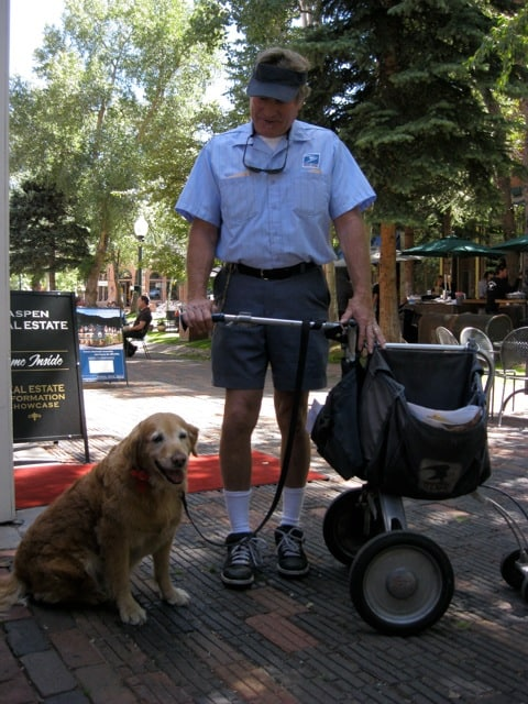 Mail Carrier and Retriever - Aspen, CO