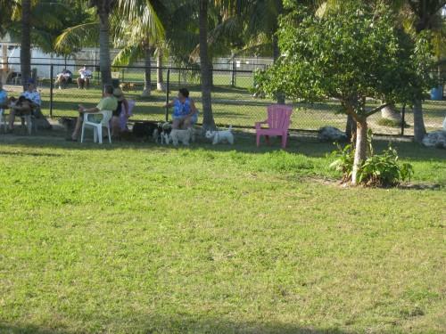 Key West Dog Park