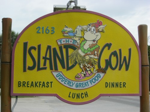 Island Cow