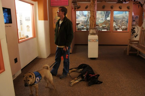 Dogs in Museum at Manitou Springs Cliff Dwellings