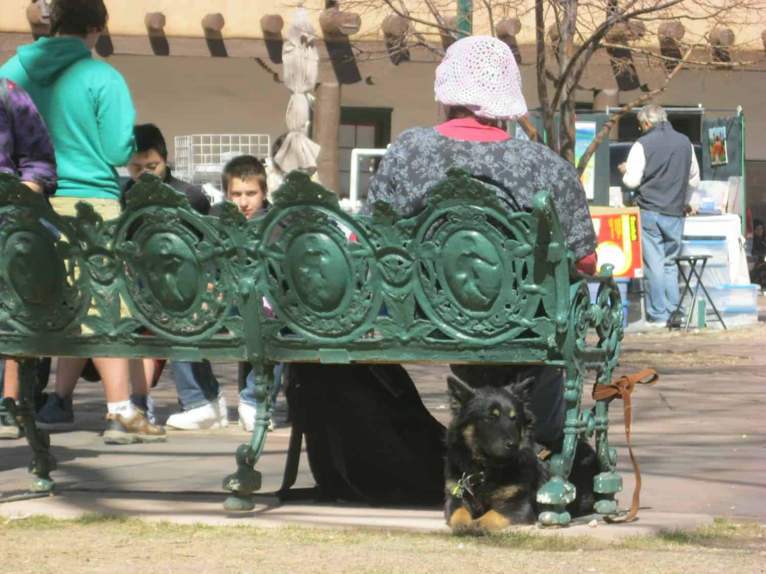 Black and tan dog lying under a green bench in the Plaza in Santa Fe, NM