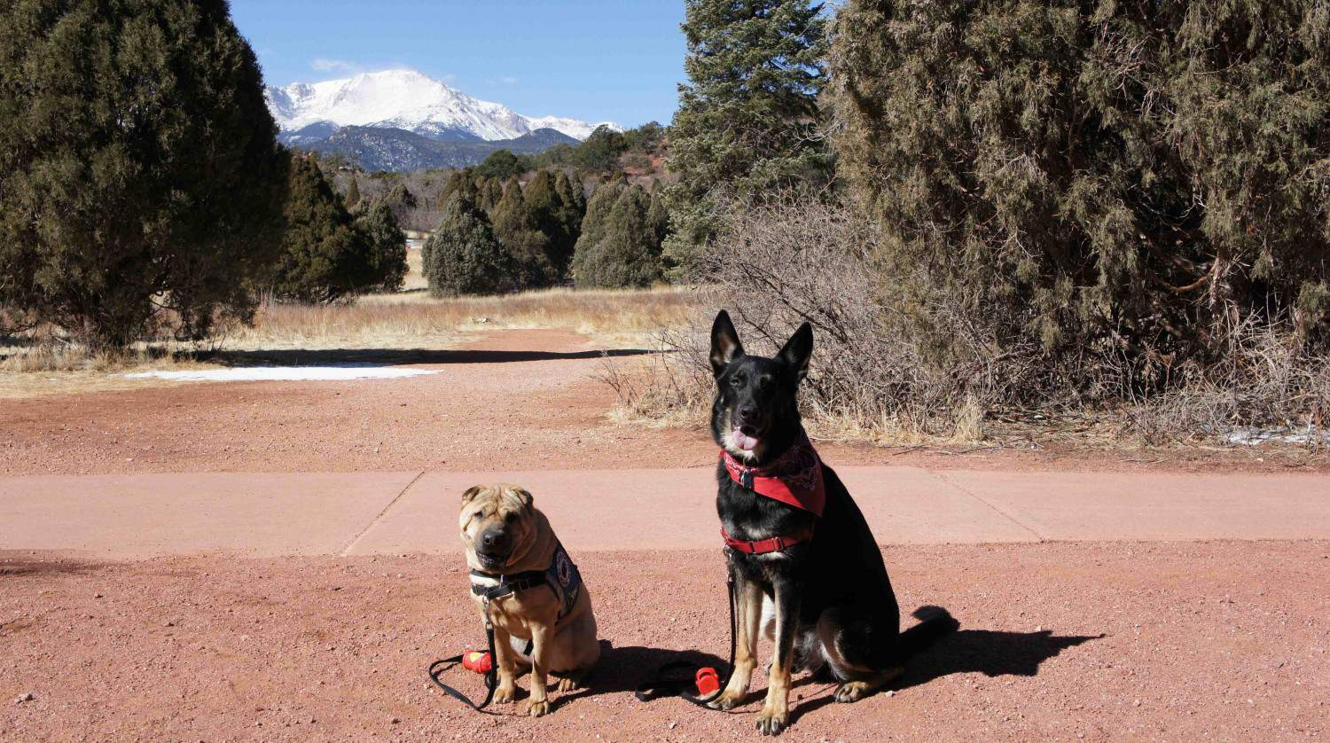 Pet Friendly Attractions in Manitou Springs, CO