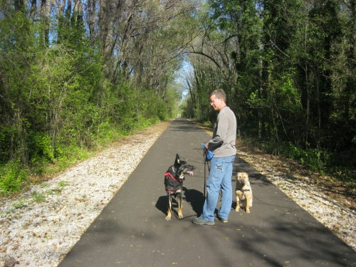 Shelby Farms Greenline Trail