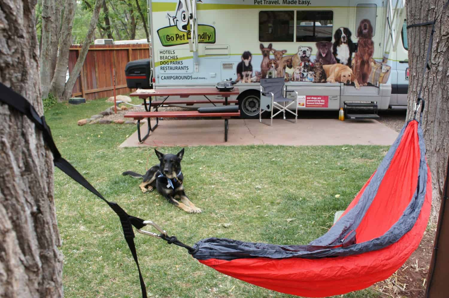 Pet Friendly RV rental at a campsite with a dog and hammock
