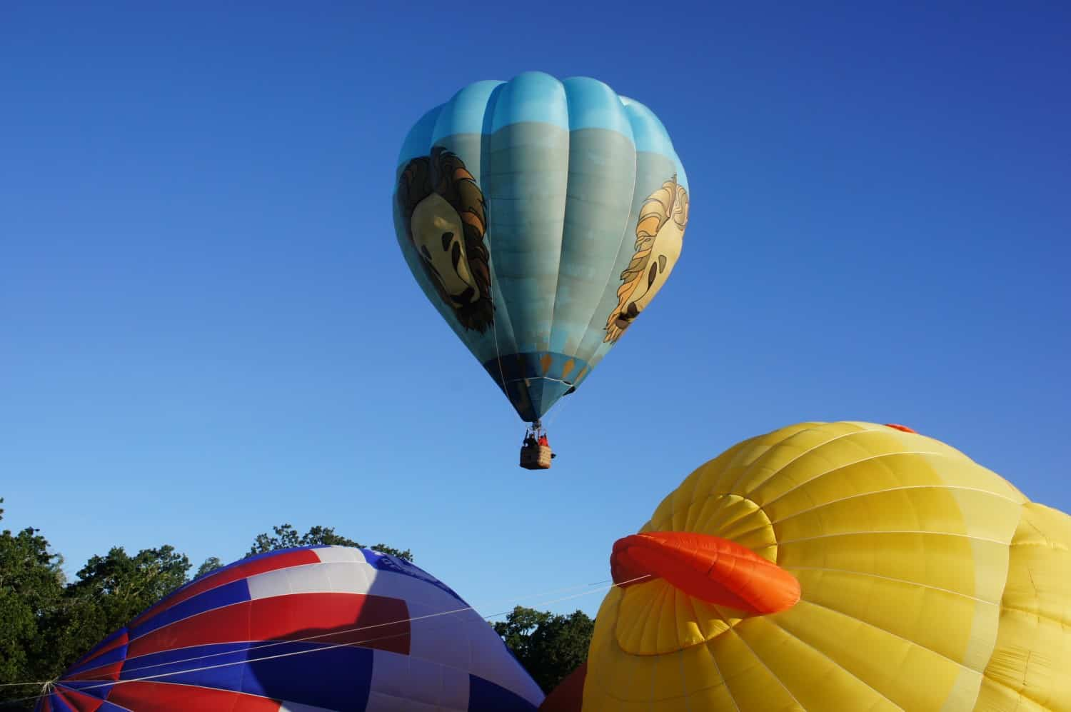 Happening Upon Hot Air Balloons
