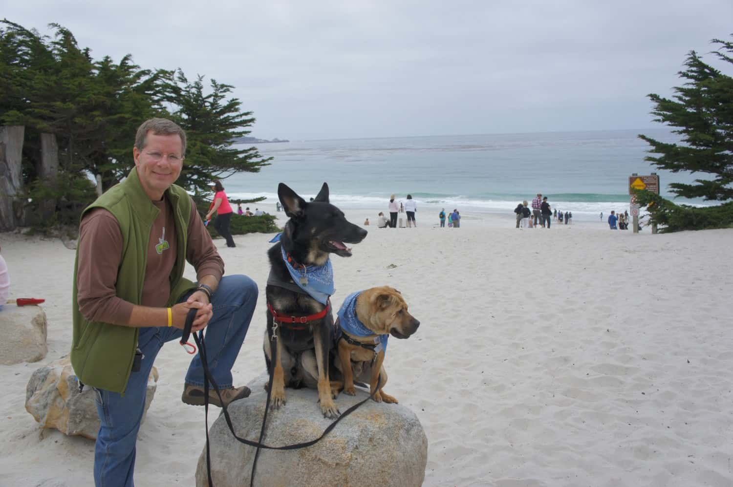 Dog Friendly Beach - Carmel, CA