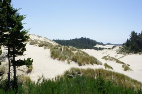 Oregon Dunes - Dunes City, Oregon