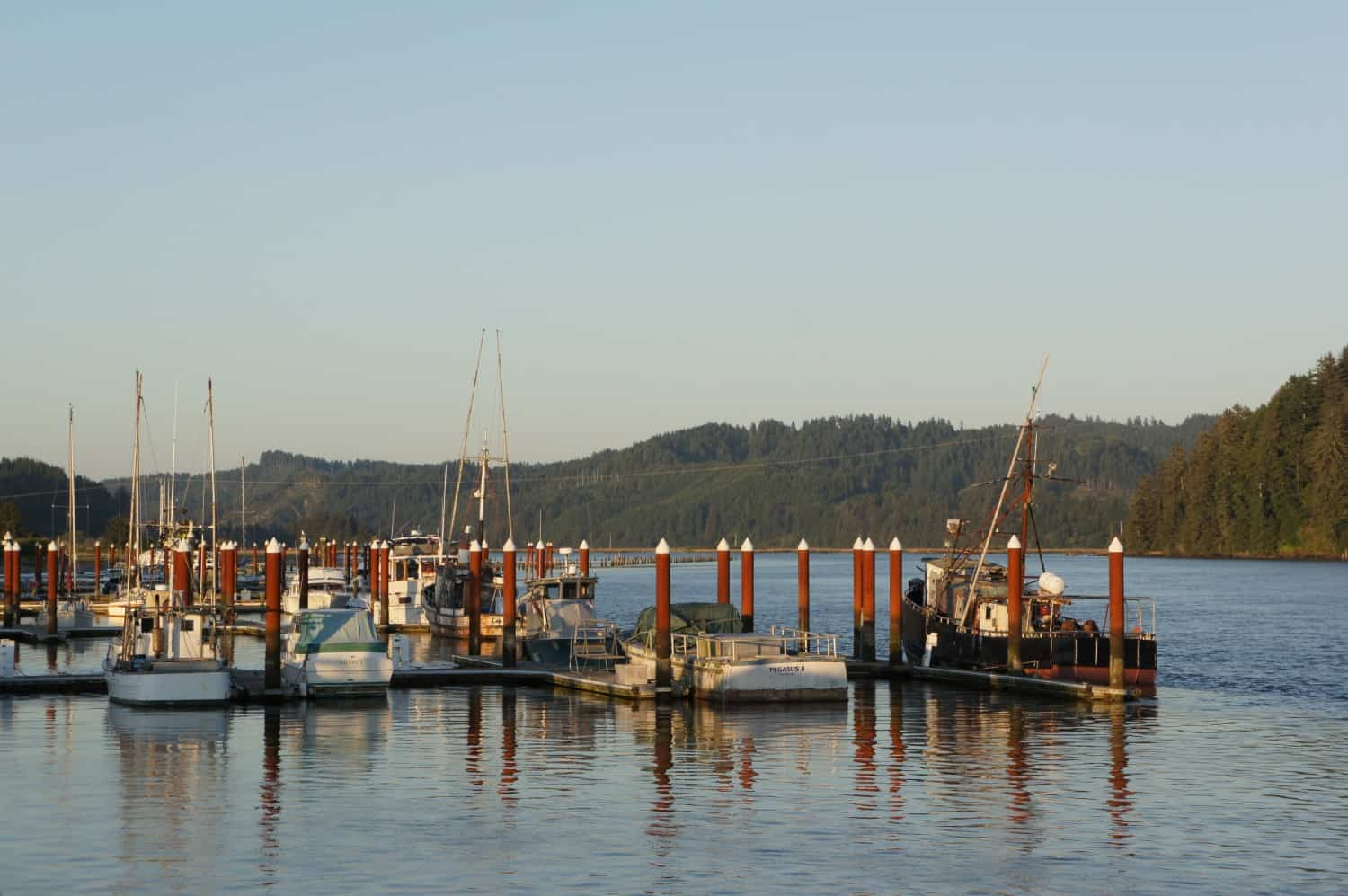 Boats in Port - Florence, OR