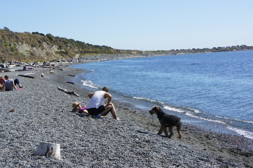 Dallas Road - One of British Columbia's Best Dog Friendly Beaches