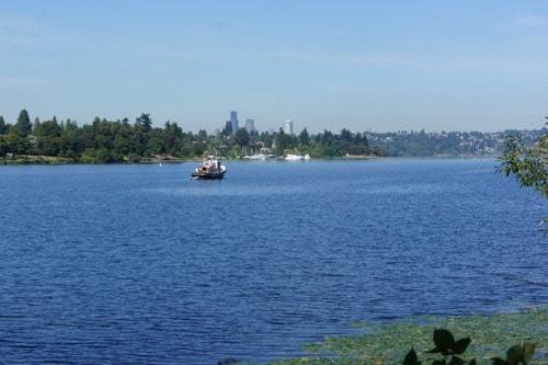 Seward Park - Seattle, WA