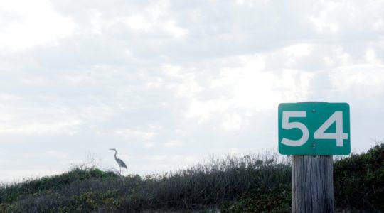 Beach - Mustang Island, TX