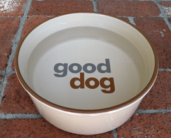 Dog Bowl on Sidewalk