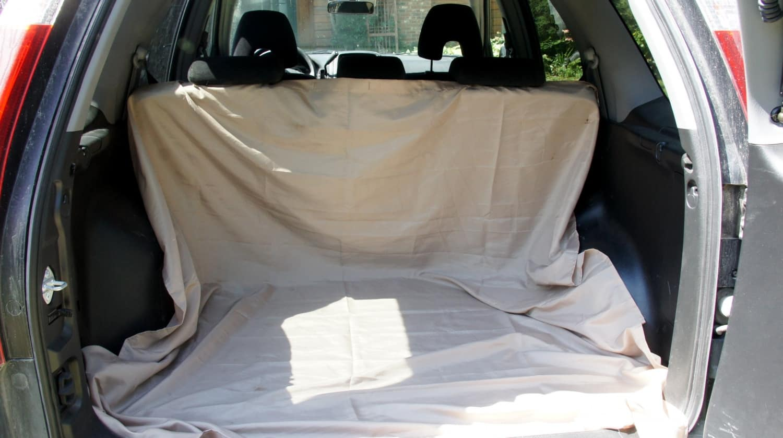 Shower Curtain in Rental Car