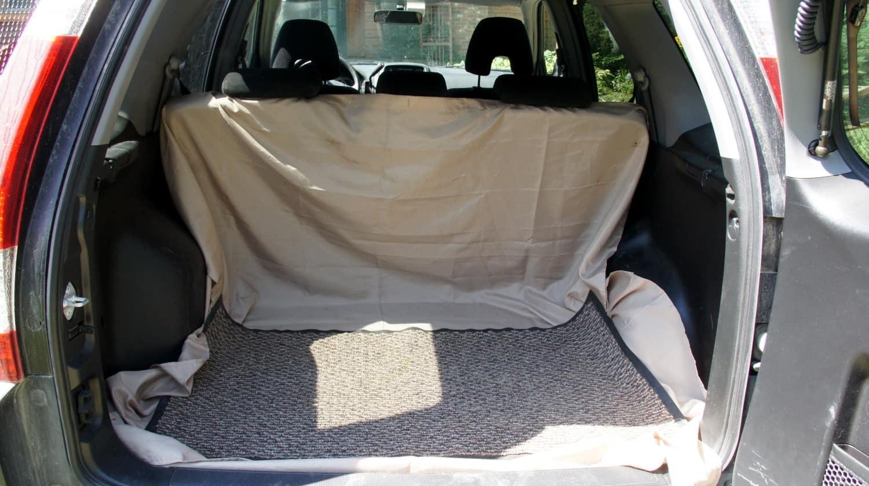 Door Mat in Rental Car