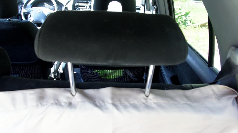Headrest in Rental Car