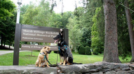 Marsh-Billings-Rockefeller Park - Woodstock, VT
