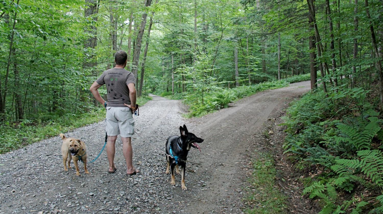 Ty, Rod and Buster at Marsh-Billings-Rockefeller Park - Woodstock, VT