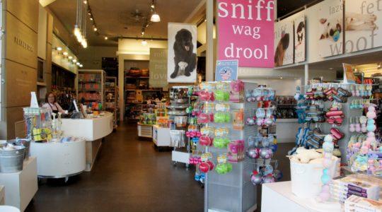 Planet Dog Company Store - Portland, ME