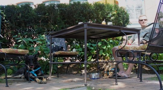 Garden Cafe at Portland Regency - Portland, ME
