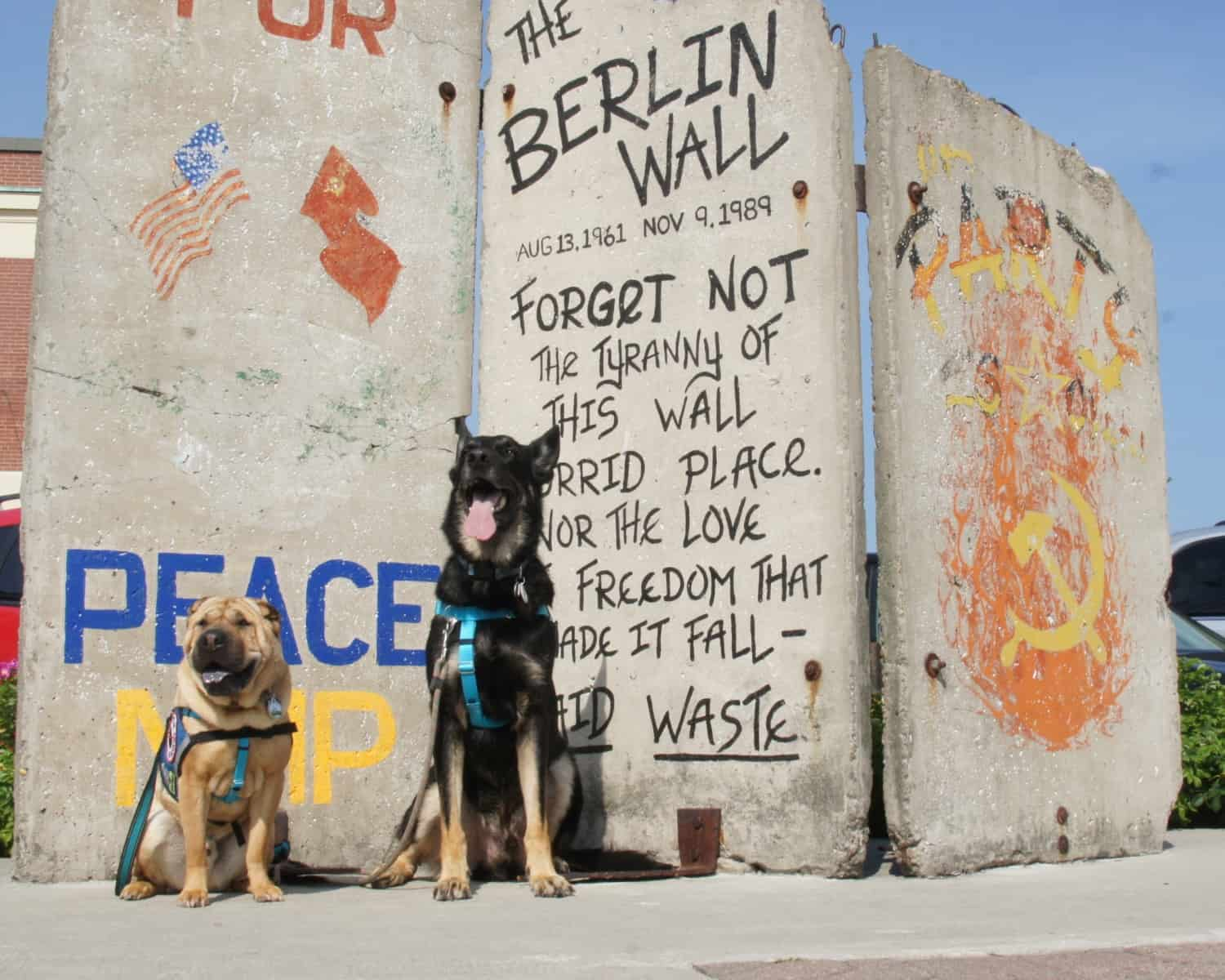 Ty and Buster at Berlin Wall - Portland, ME