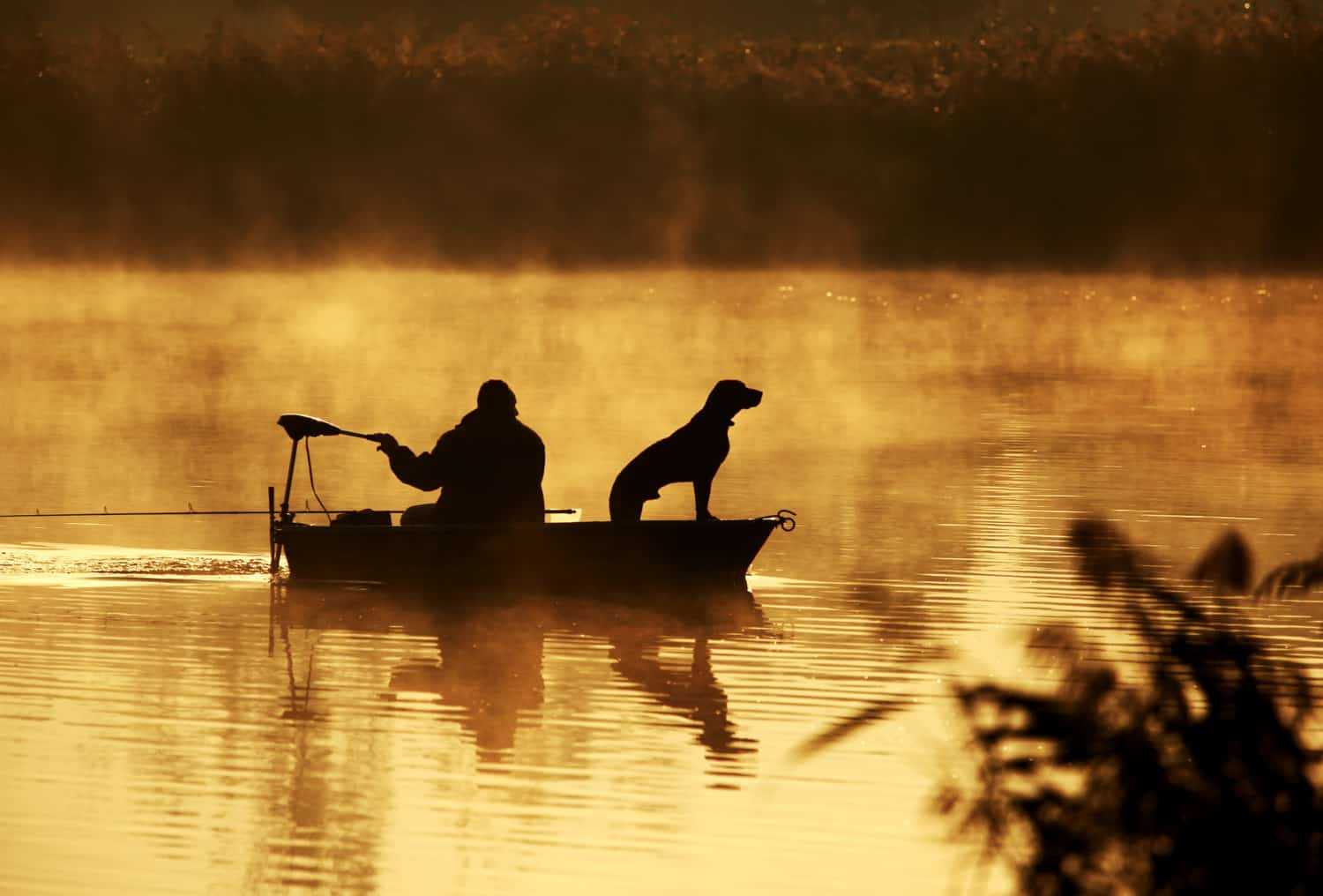 Man and a dog in a fishing boat at sunrise with fog rising off the water