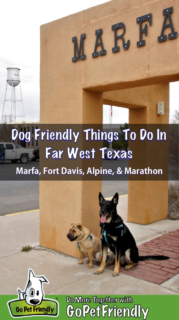 Two dogs sitting under a Marfa sign in Far West Texas