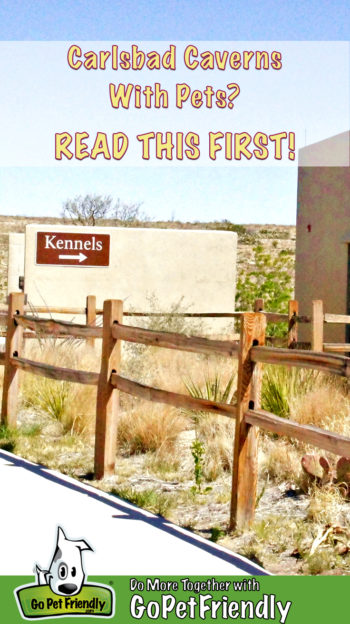 Sign for Kennels at Carlsbad Caverns National Park in New Mexico