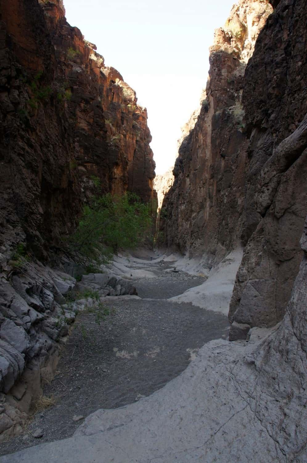 Big Bend Ranch State Park - TX