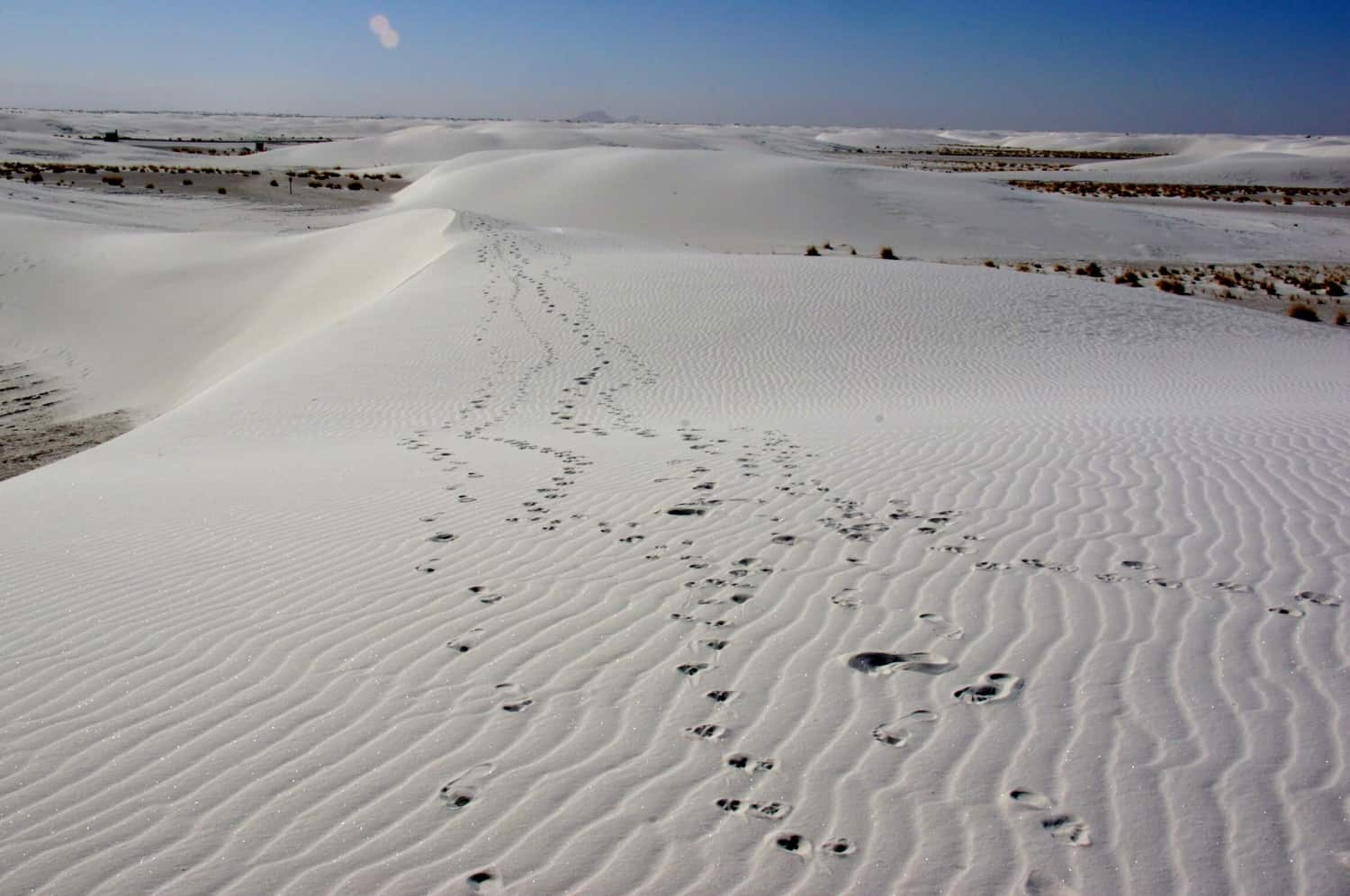 Footprints in the sand at White Sands National Park - Alamogordo, NM