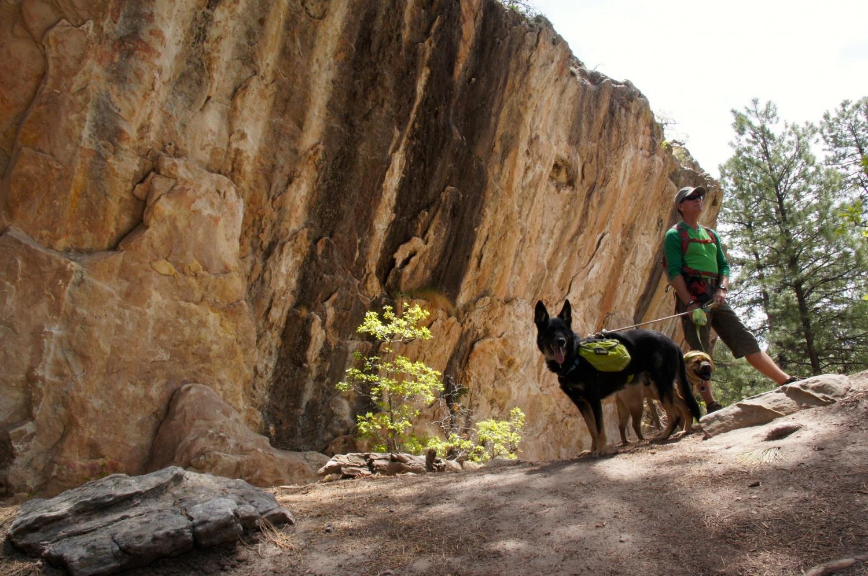 The Boys - Dalla Mountain - Durango, CO