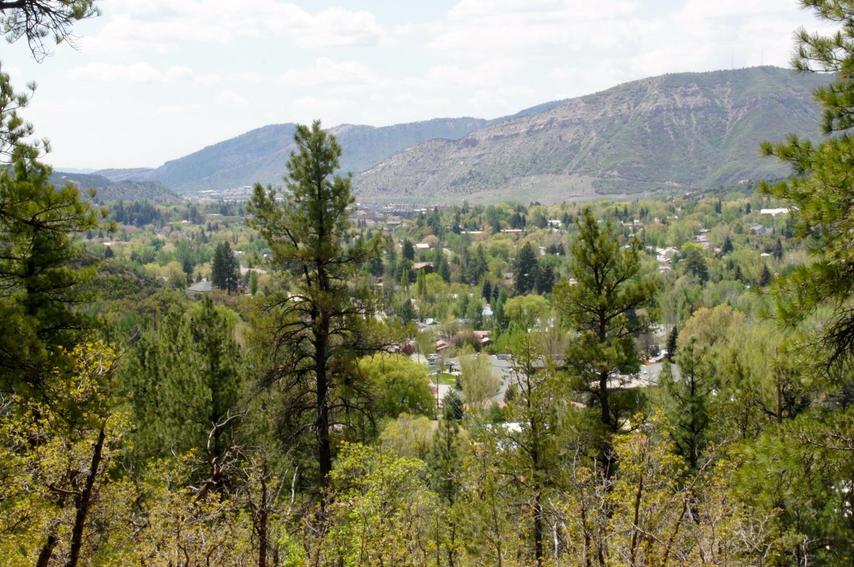 Dalla Mountain - Durango, CO
