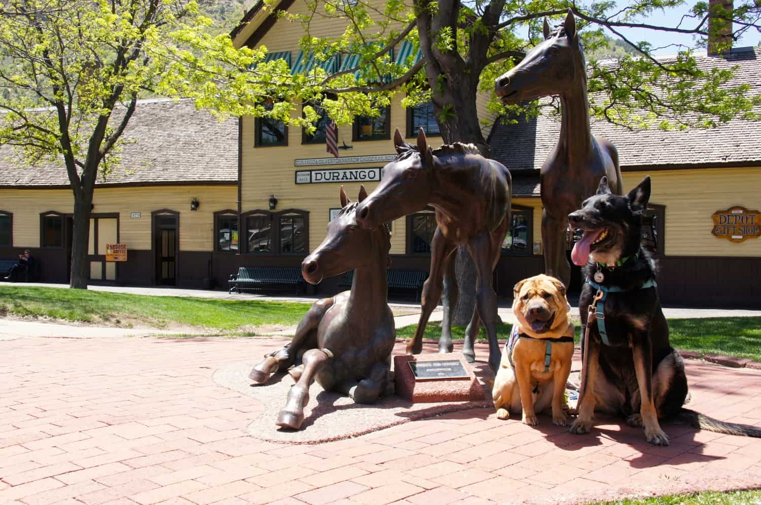 Dogs Find Durango Doggone Pet Friendly!