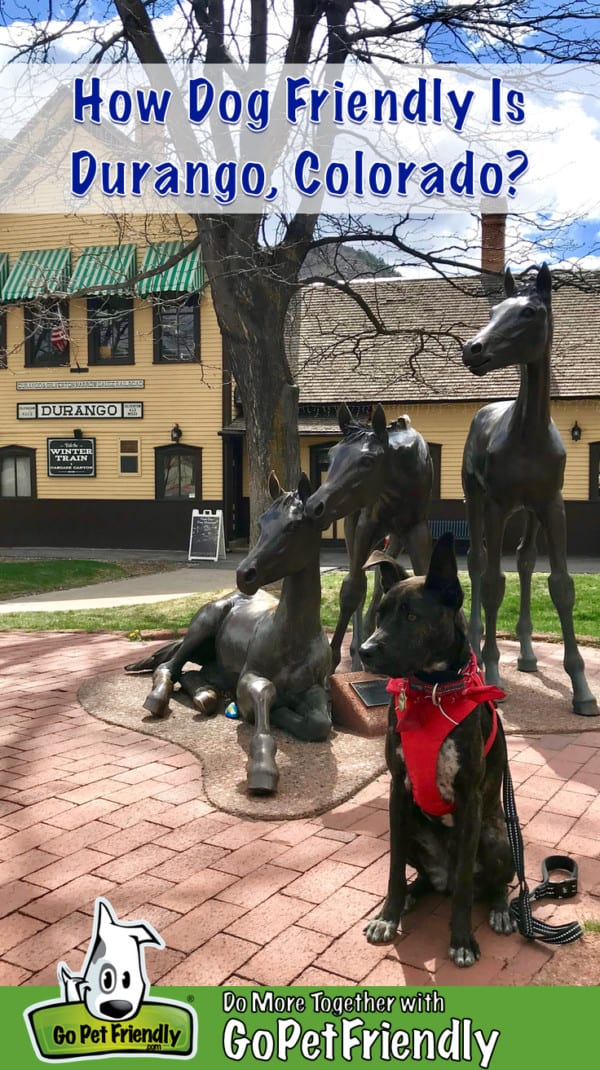 Brindle dog in a red bandana and harness sitting in front of a sculpture of three horses on Main Avenue in Durango, CO