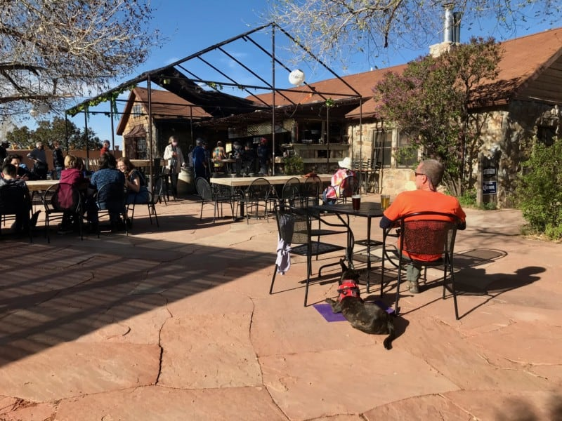 Man and dog on the patio at Beer Creek Brewing Company, Santa Fe, NM
