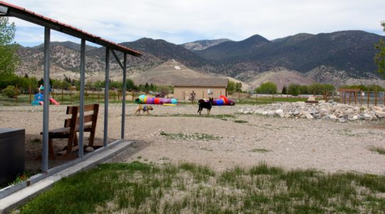 Loyal Duke's Dog Park - Salida, CO