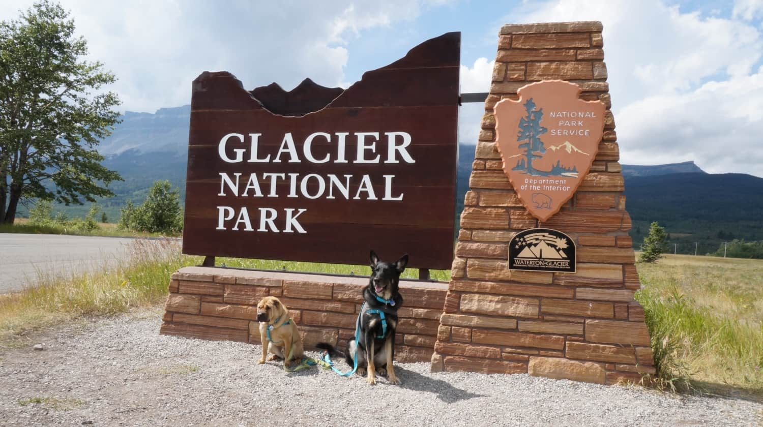 Ty and Buster at Glacier National Park, MT