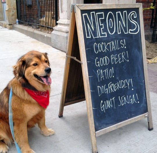 Neon's Unplugged - Cincinnati, OH