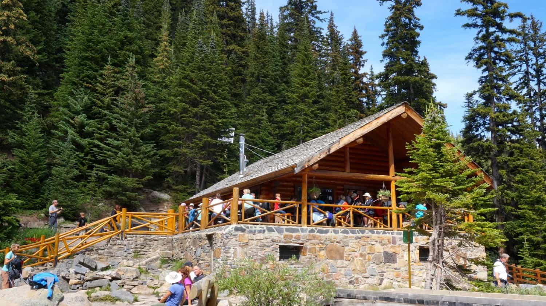 Hike to the Tea House - Lake Louise, AB