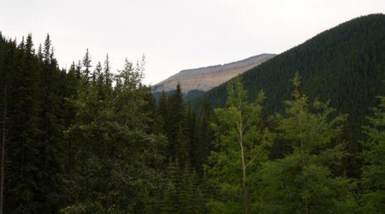 Miette Hot Springs - Jasper, AB