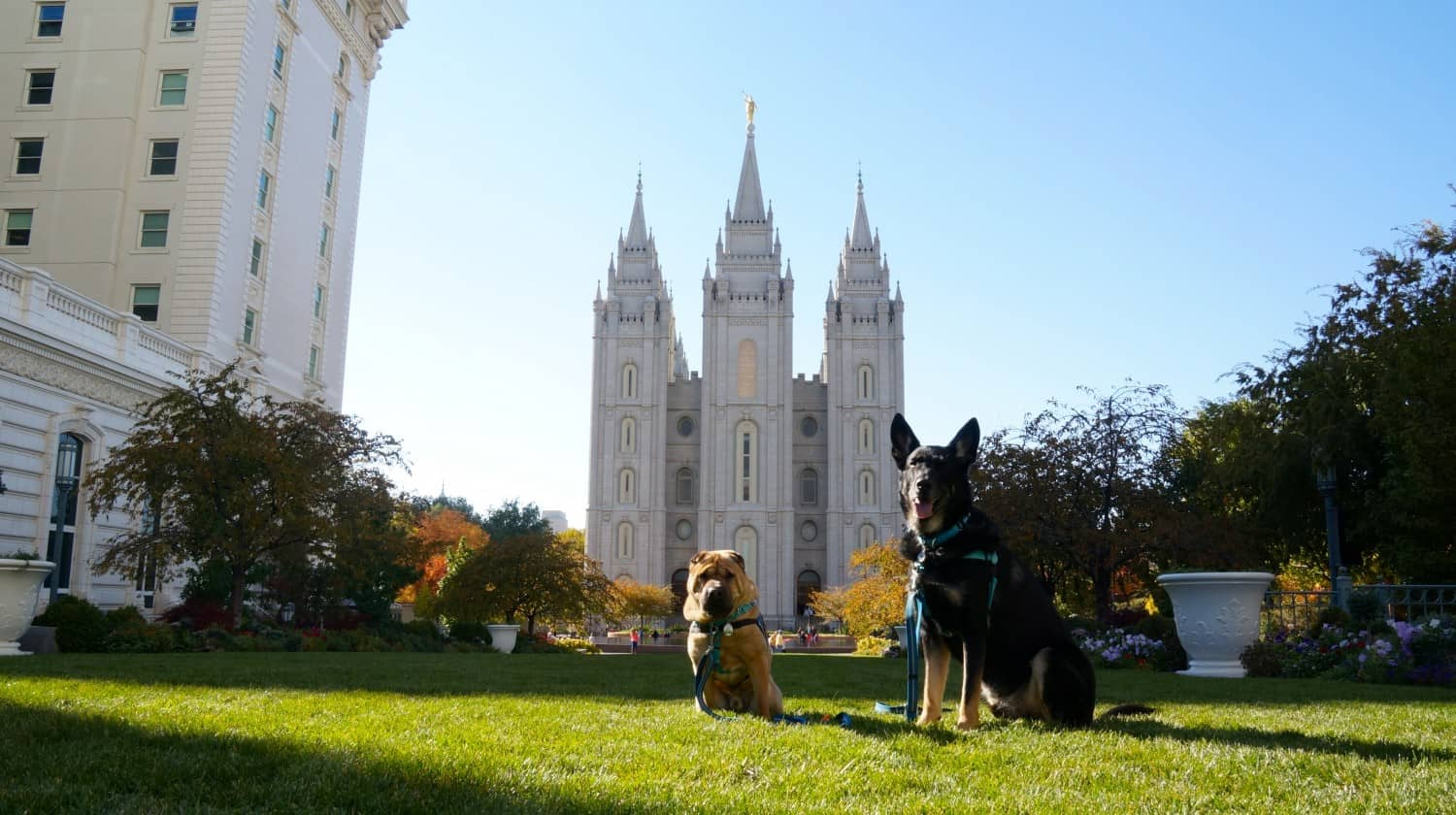 Ty and Buster at Temple Square - Salt Lake City, UT