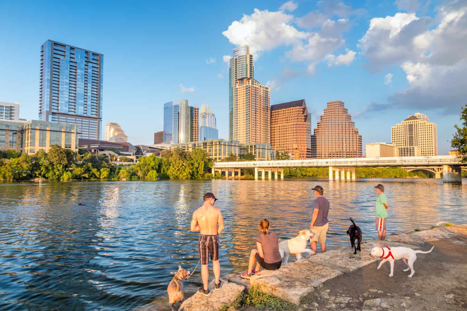 People and dogs on the dog friendly lakeshore with the Austin skyline across the lake