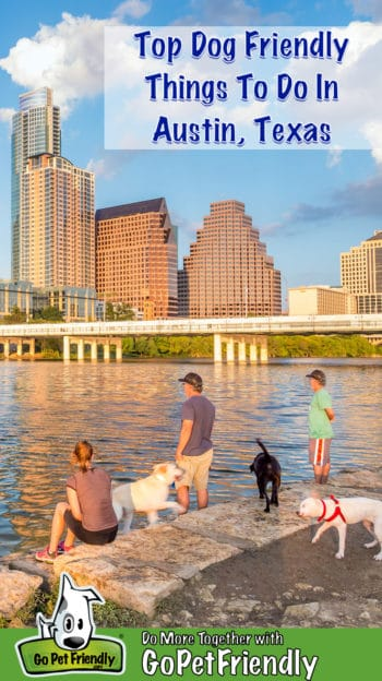Three people and three dogs on the dog friendly lakeshore with the Austin skyline across the lake