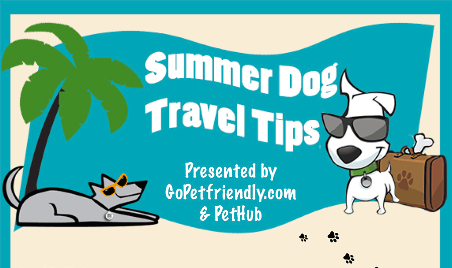 Get your next pet friendly trip off on the right paw with these tips for summer travel with your dog from @PetHub gets lost pets home faster. and @GoPetFriendly.com!